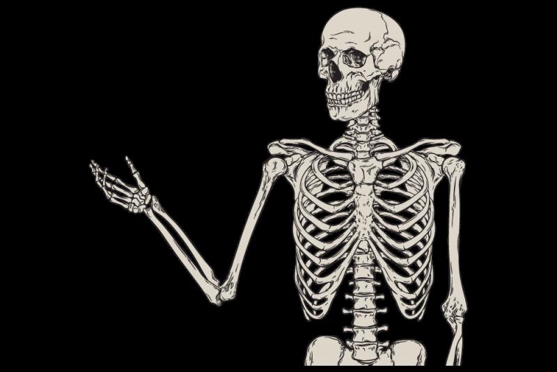 Bone Trivia